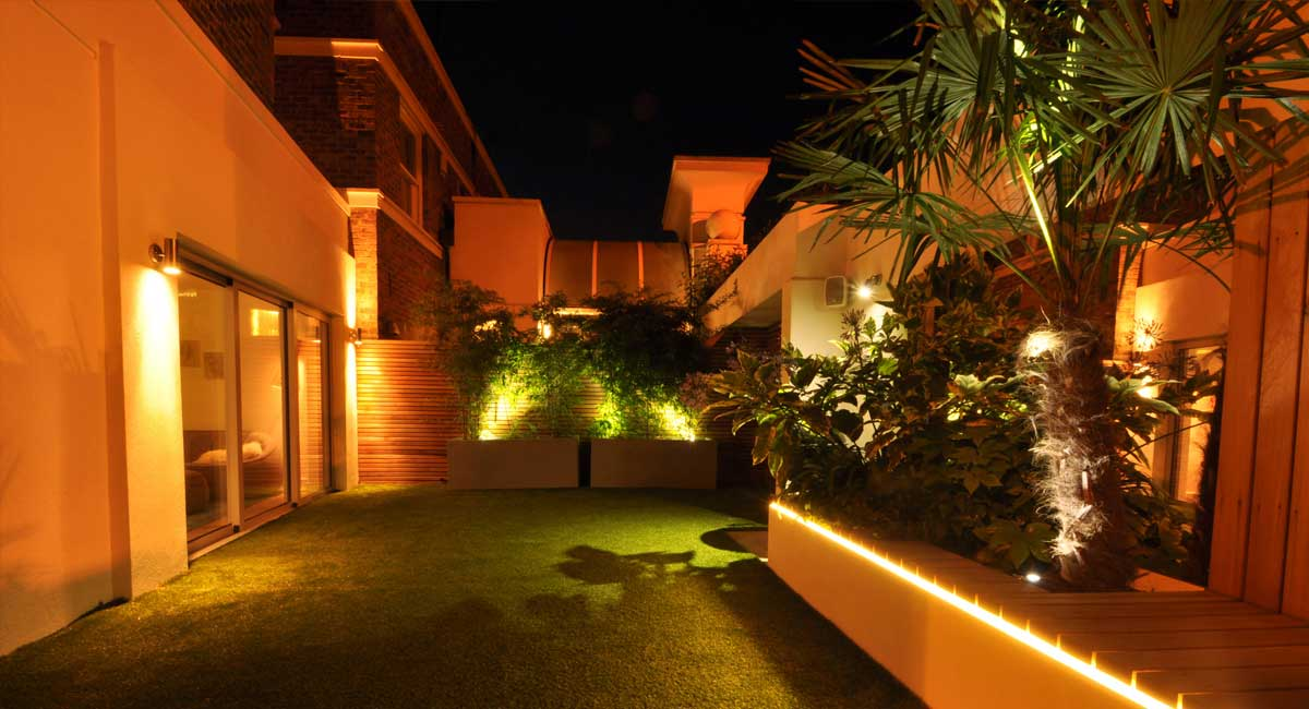Fan palm, Night lights, Lighting, LED Strip, Ambient light, Courtyard