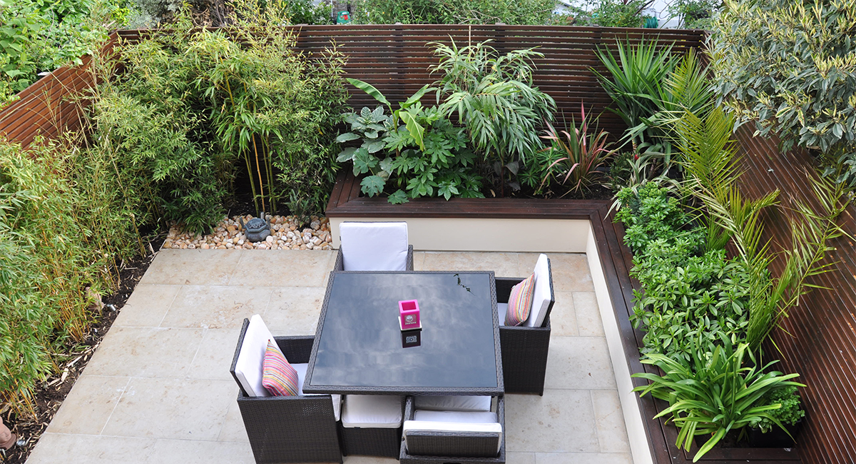 Urban Jungle Garden Design Clapham London Bamboo